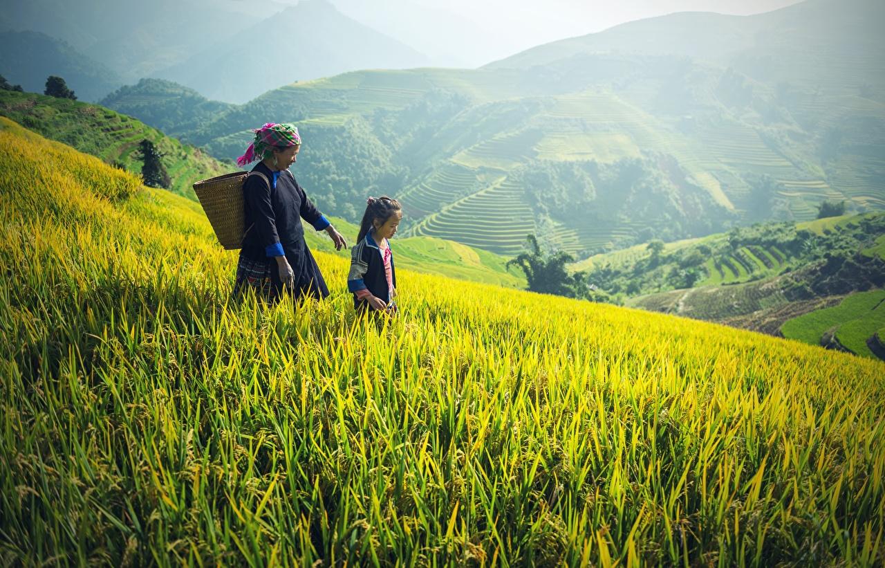 Картинка Девочки Старуха Дети два Горы Природа Поля корзины азиатка траве девочка старая женщина пожилая женщина ребёнок 2 две Двое гора вдвоем Азиаты азиатки Корзина Корзинка Трава