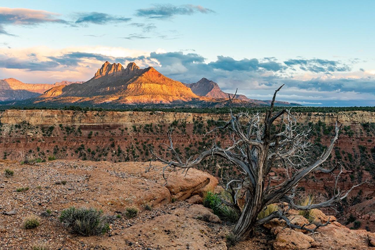 Картинка Зайон национальнай парк США Utah гора Природа штаты америка Горы