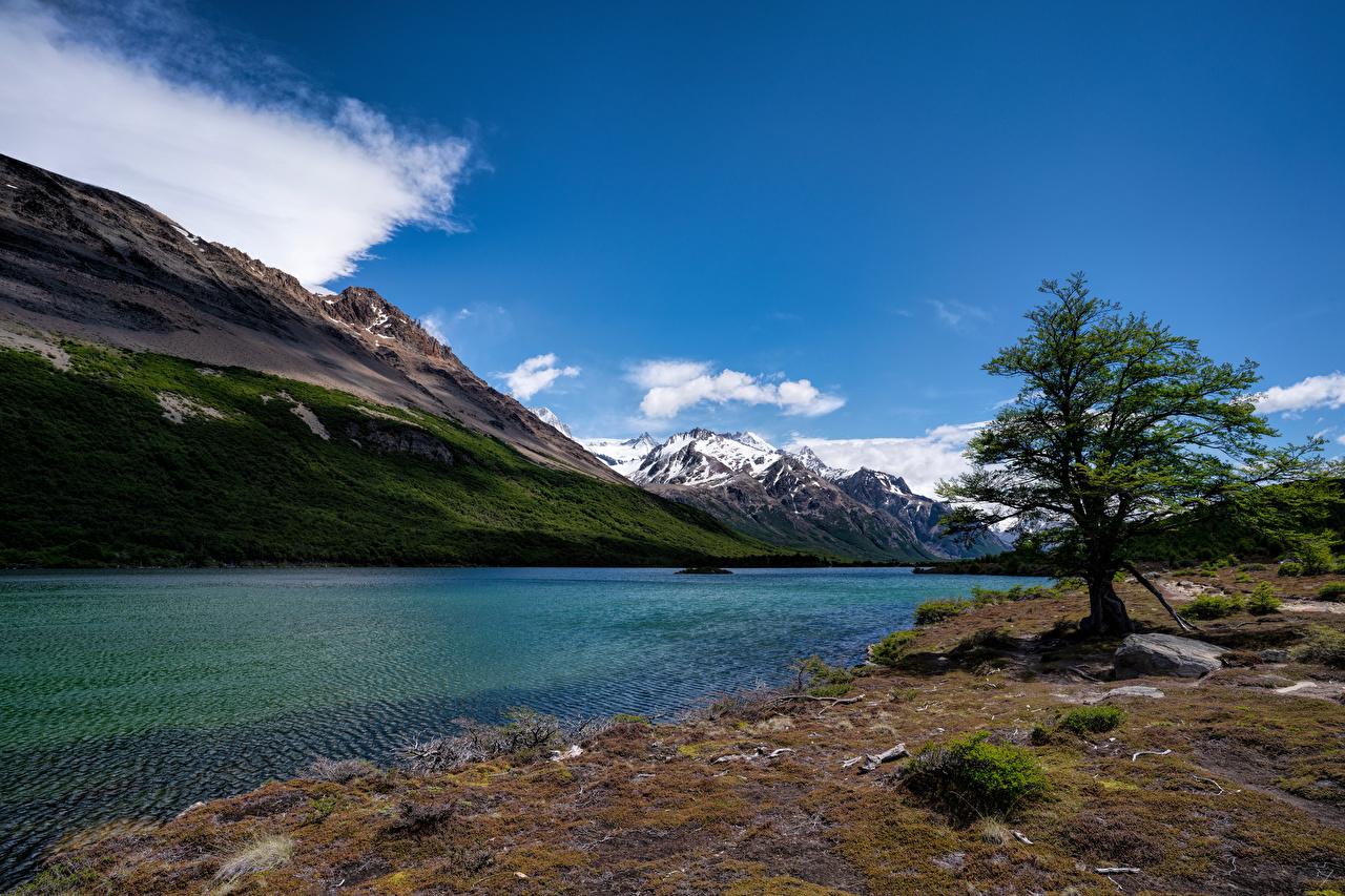 Фотографии Аргентина Laguna Hija гора Природа Озеро Деревья Горы дерево дерева деревьев