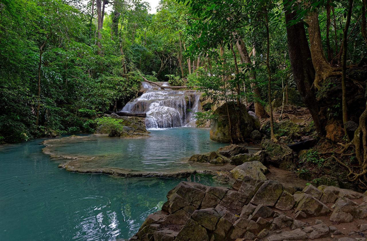 Фото Таиланд Erawan National park Ручей Природа Водопады лес парк Камень дерево ручеек Леса Парки Камни дерева Деревья деревьев