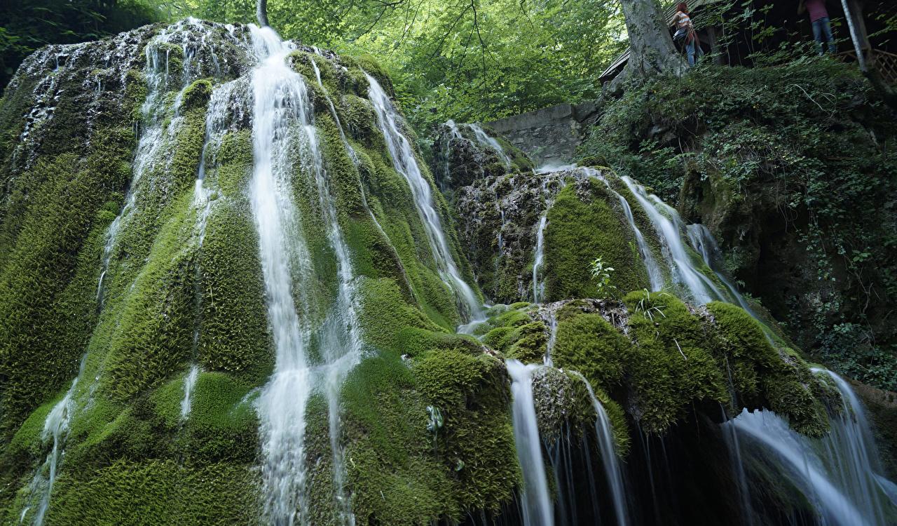 Картинка Румыния Bigar Waterfall Утес Природа Водопады Мох Скала