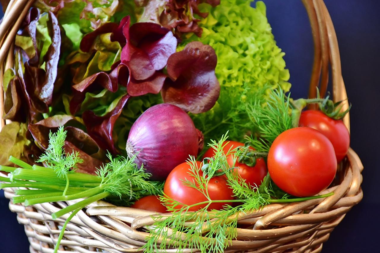 Фото Томаты Лук репчатый Укроп Корзинка Еда Овощи Помидоры Корзина Пища Продукты питания