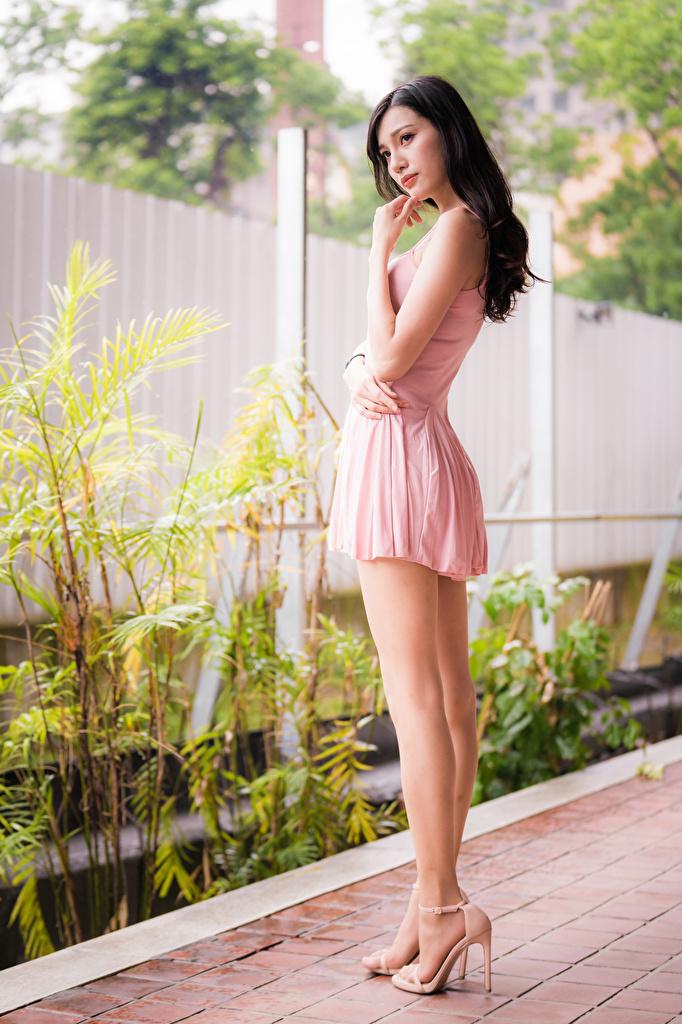 Фото брюнеток Девушки Ноги азиатка смотрят платья  для мобильного телефона брюнетки Брюнетка девушка молодая женщина молодые женщины ног Азиаты азиатки Взгляд смотрит Платье