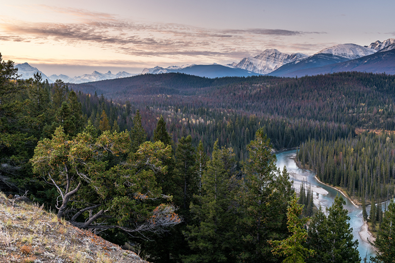 Картинка Джаспер парк Канада Alberta Горы Природа Леса Пейзаж река гора лес Реки речка