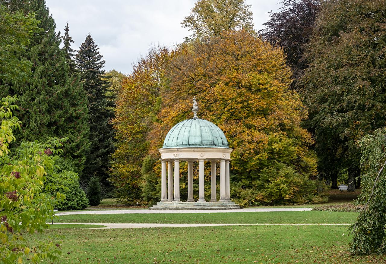Картинка лист Германия Bad Pyrmont, Kurpark Осень Природа парк газоне Деревья Листва Листья осенние Парки Газон дерево дерева деревьев