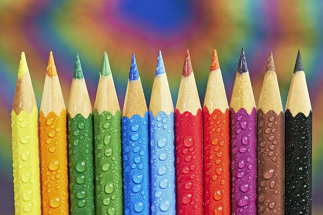 Фотографии карандашей Tom Pavlasek Разноцветные капля вблизи карандаш карандаша Карандаши Капли капель капельки Крупным планом