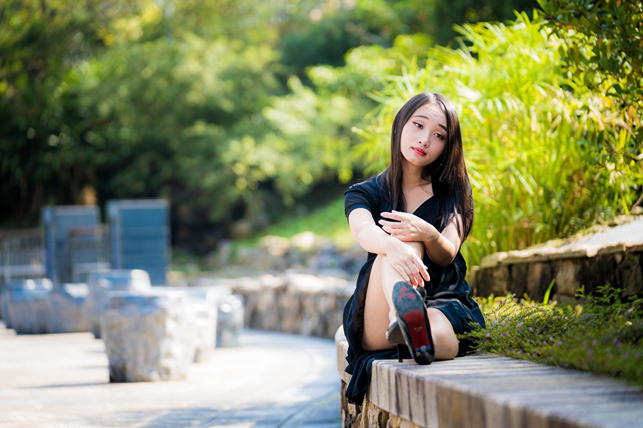Фотографии Размытый фон Девушки Азиаты сидя боке девушка молодая женщина молодые женщины азиатки азиатка Сидит сидящие