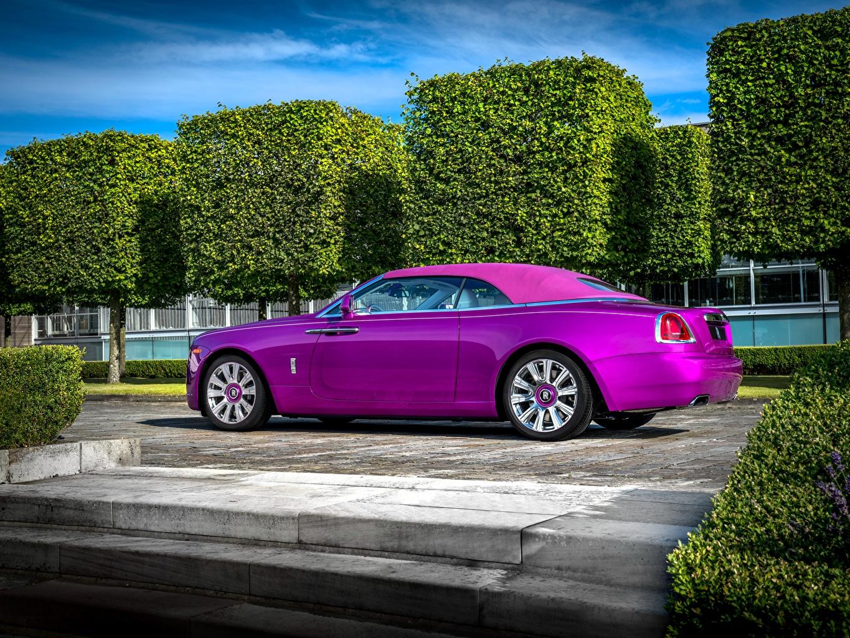 Картинка Rolls-Royce 2017 Dawn in Fuxia Роскошные фиолетовые автомобиль Роллс ройс дорогие дорогой дорогая люксовые роскошная роскошный фиолетовых Фиолетовый фиолетовая авто машина машины Автомобили