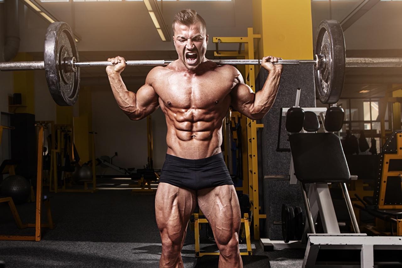 Фото Мышцы Мужчины спортзале тренируется Спорт штангой Бодибилдинг Живот мужчина мускулы Спортзал Тренировка спортивный зал физическое упражнение Штанга спортивные спортивная спортивный живота