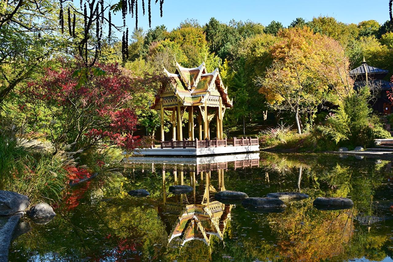 Обои для рабочего стола Мюнхен Бавария Германия Westpark Осень Пруд парк Пагоды Камни город осенние Парки Камень Города