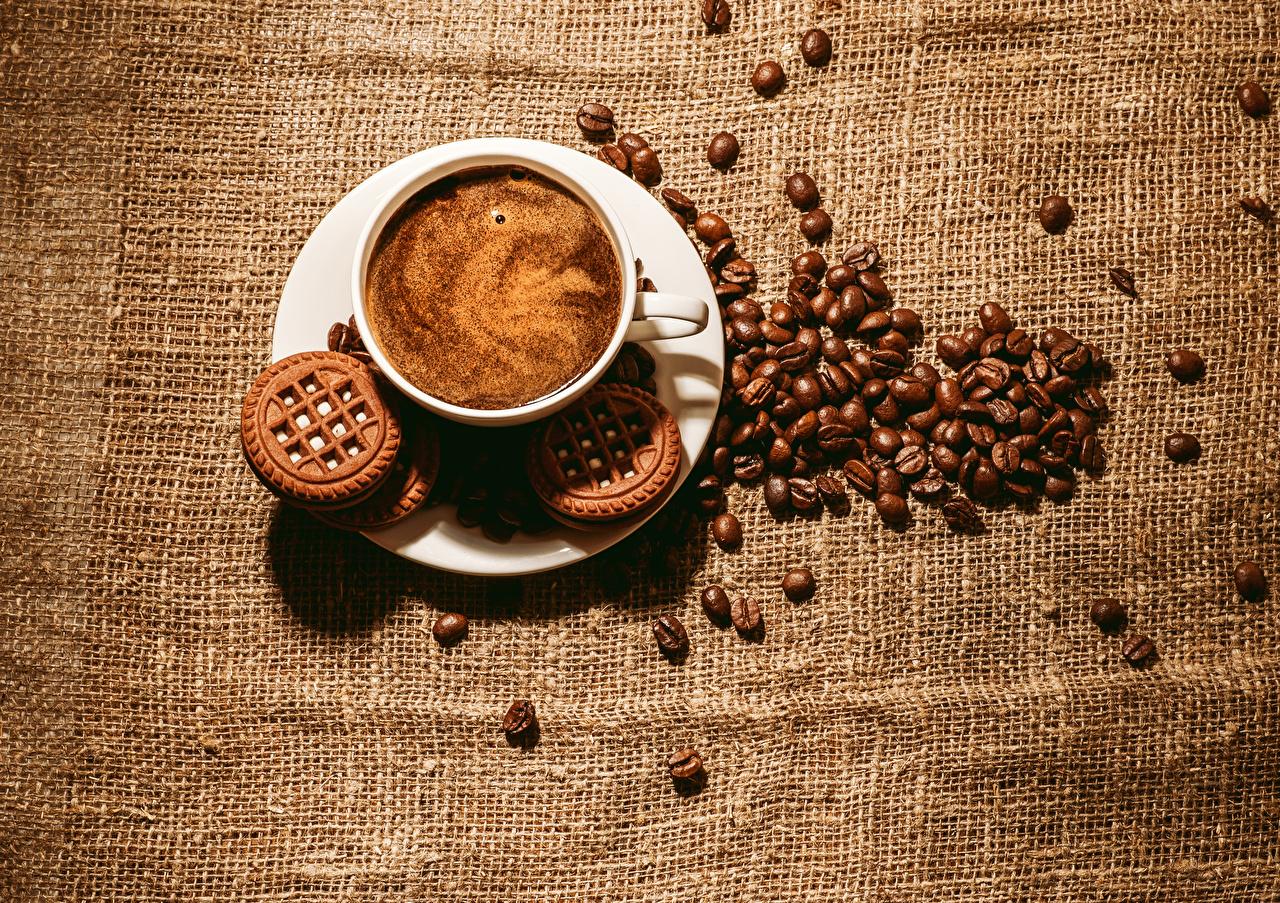 Фото Кофе зерно Пища чашке Печенье Напитки Цветной фон Зерна Еда Чашка Продукты питания напиток