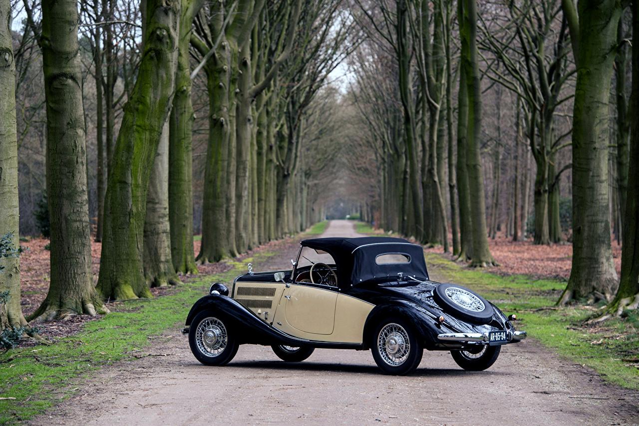 Фотографии Мерседес бенц 1936-1942 170 V Roadster (W136) Родстер винтаж машины Mercedes-Benz Ретро старинные авто машина автомобиль Автомобили