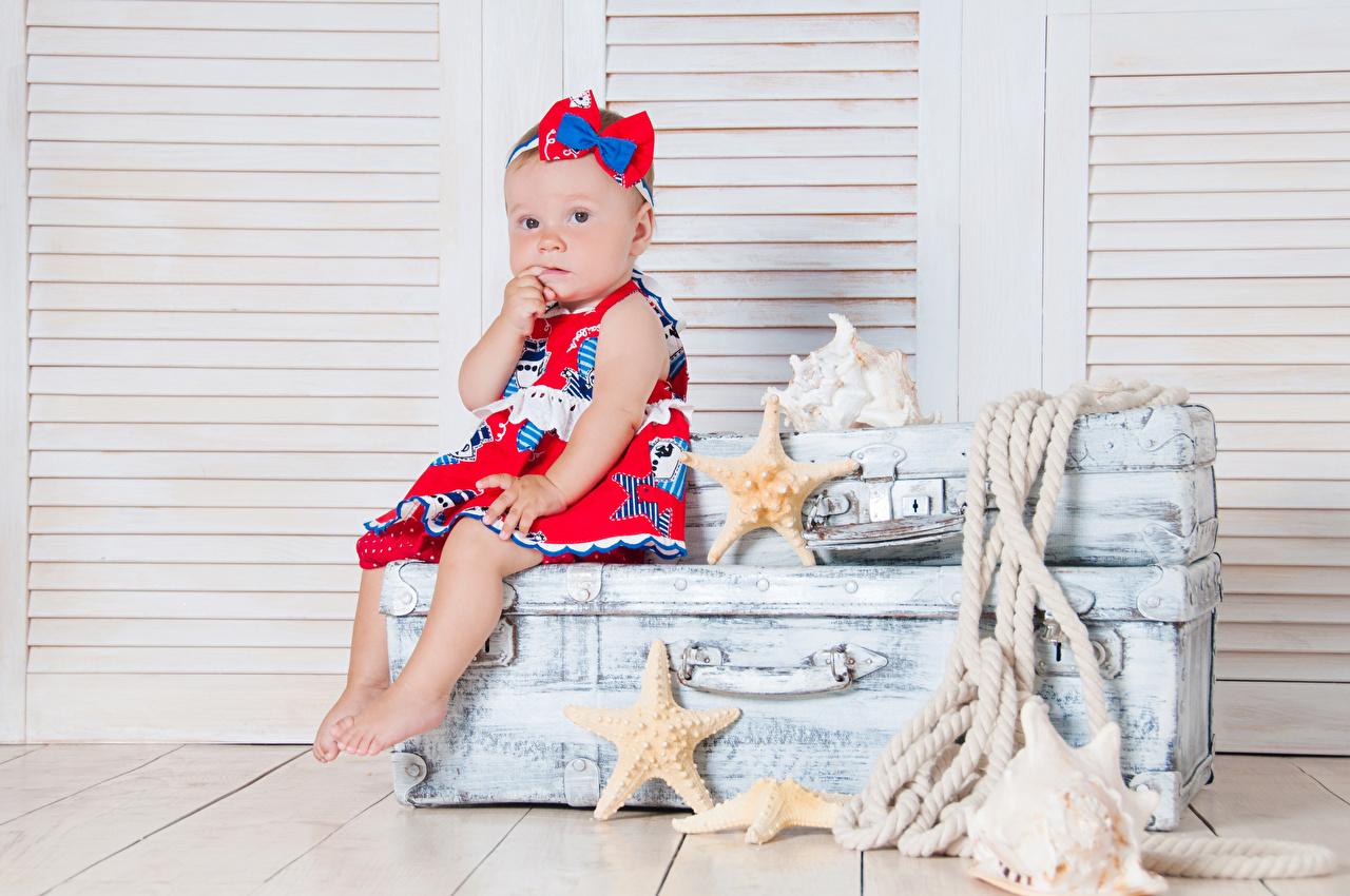 Фотография Девочки Морские звезды Дети чемоданом Сидит смотрит девочка ребёнок Чемодан чемоданы сидя сидящие Взгляд смотрят