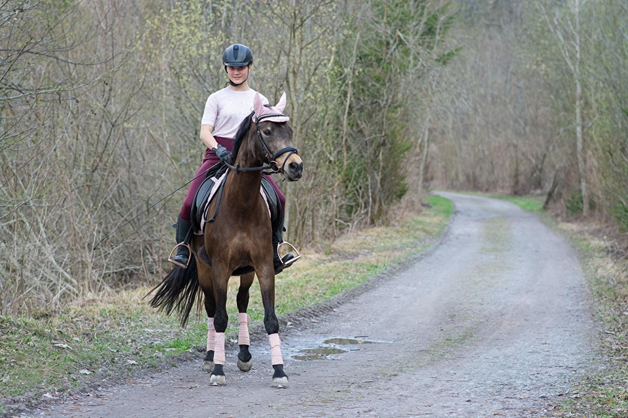 Фотография лошадь Шлем молодая женщина Дороги Сидит Лошади шлема в шлеме девушка Девушки молодые женщины сидя сидящие