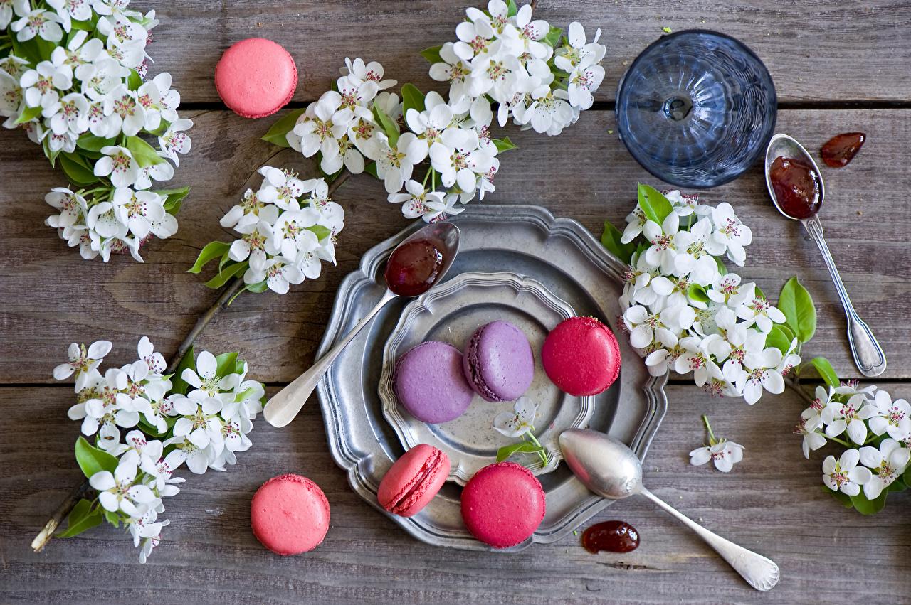 Картинка Макарон Цветы ветвь Ложка Тарелка Продукты питания Сладости Цветущие деревья цветок Еда Пища Ветки ветка ложки тарелке на ветке сладкая еда