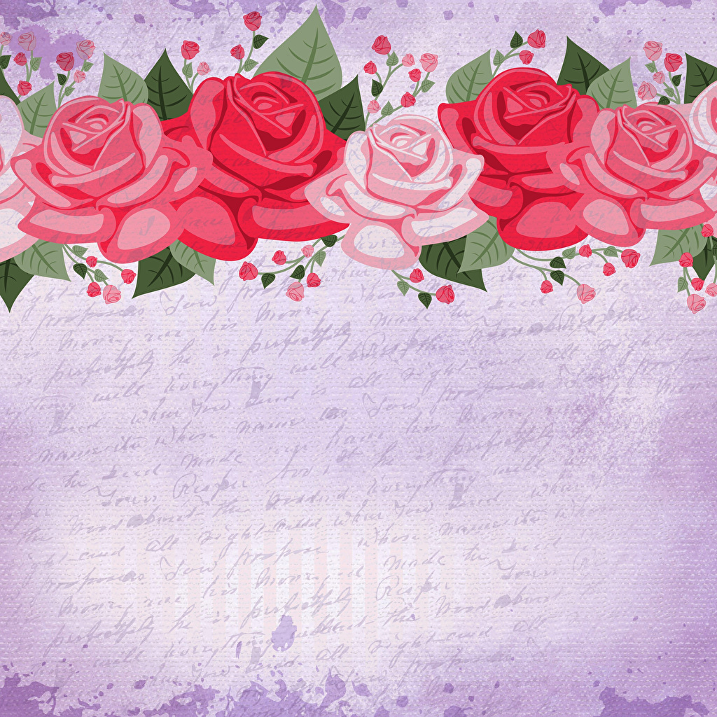 Картинка бумаги роза цветок Шаблон поздравительной открытки Рисованные бумаге Бумага Розы Цветы