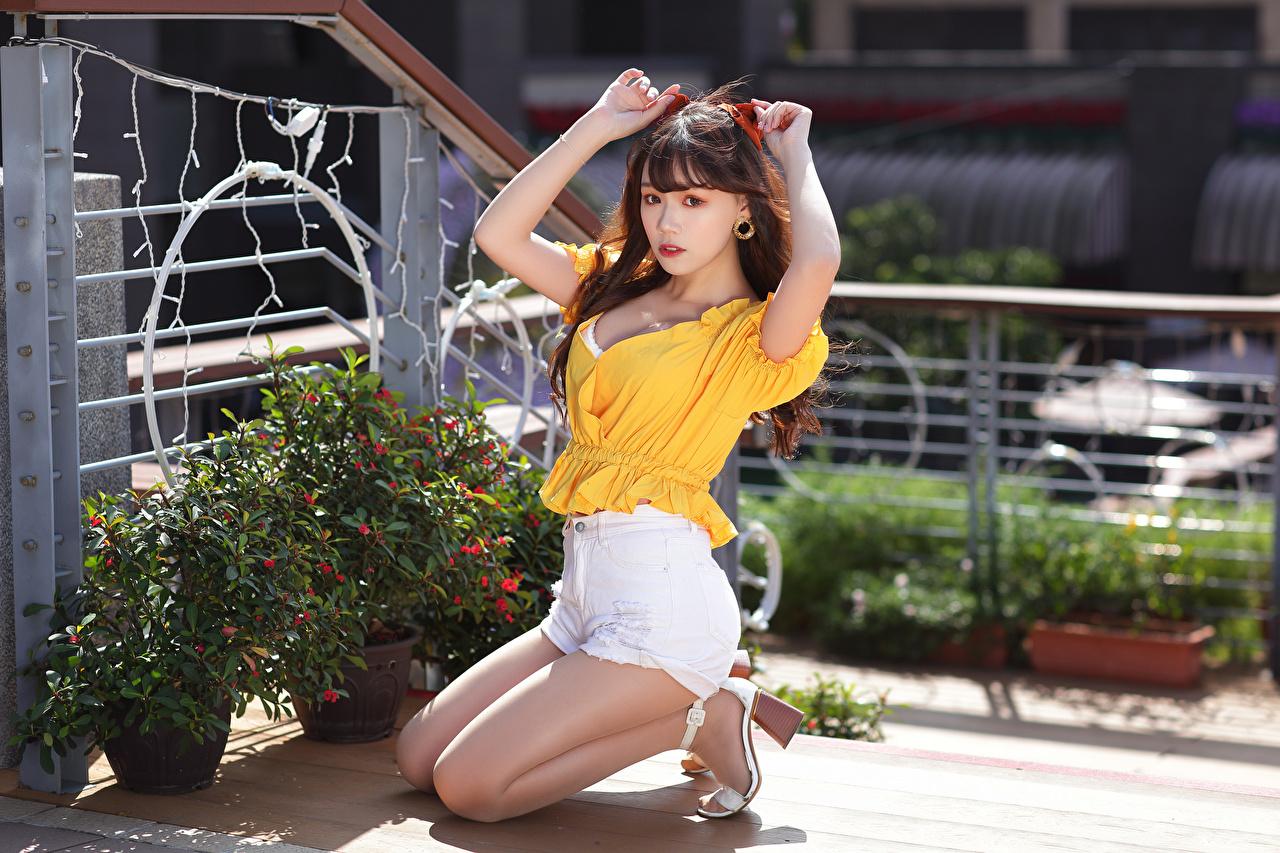 Картинки Шатенка Блузка молодые женщины азиатка Руки шорт Сидит смотрит шатенки девушка Девушки молодая женщина Азиаты азиатки сидя рука Шорты шортах сидящие Взгляд смотрят