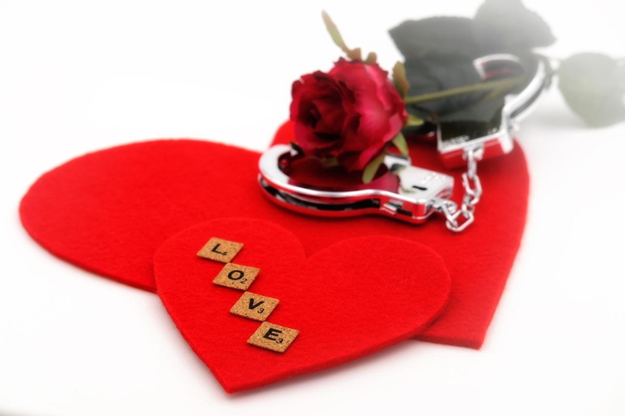Фотографии Английский сердечко Наручники Розы Любовь Белый фон Сердце