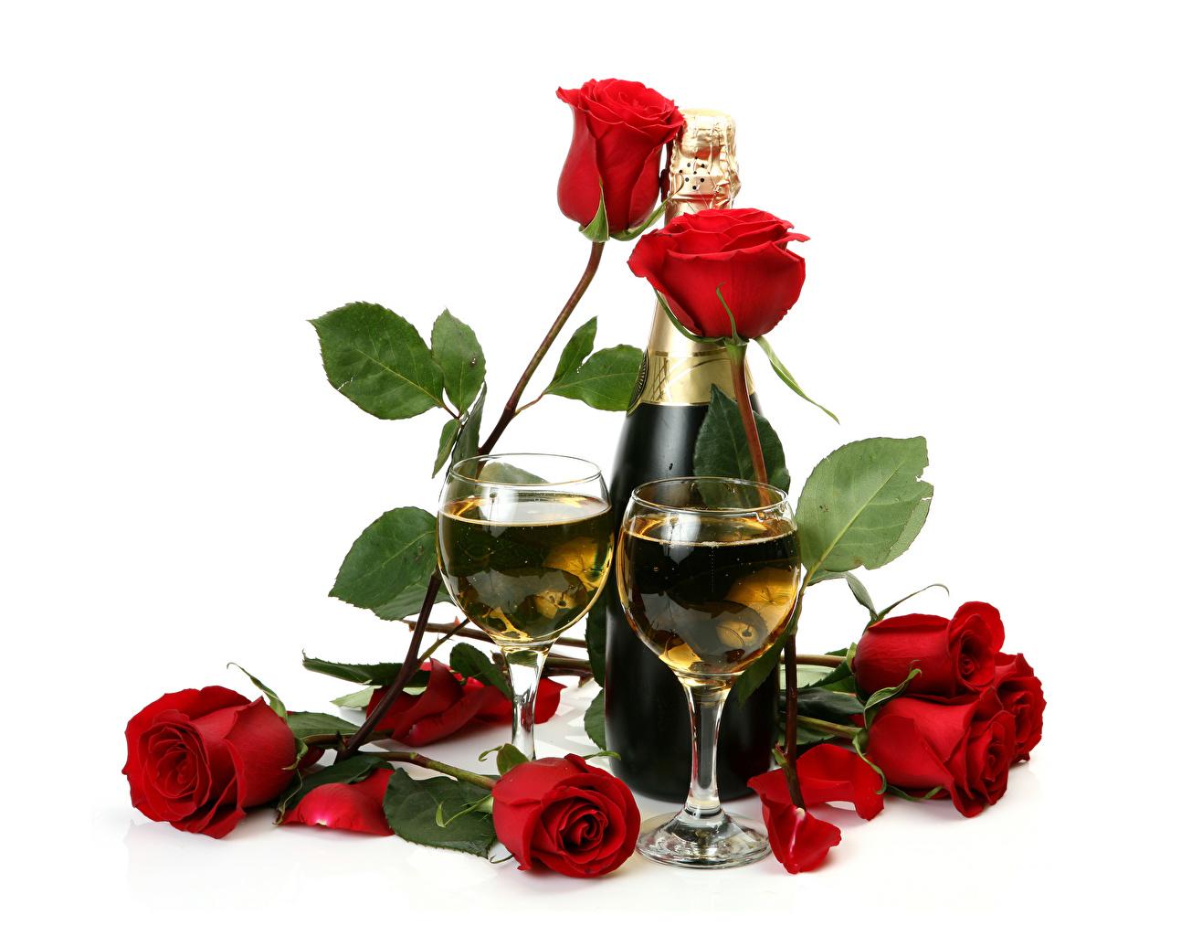 Картинка 2 Розы Красный Шампанское Цветы Пища Бокалы Бутылка Белый фон Праздники Двое вдвоем Игристое вино Еда Продукты питания