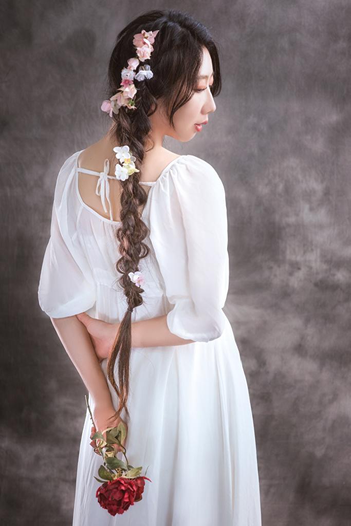 Фотографии косички Розы девушка Цветы азиатка Сзади Платье  для мобильного телефона Коса косы роза Девушки молодая женщина молодые женщины цветок Азиаты азиатки вид сзади платья