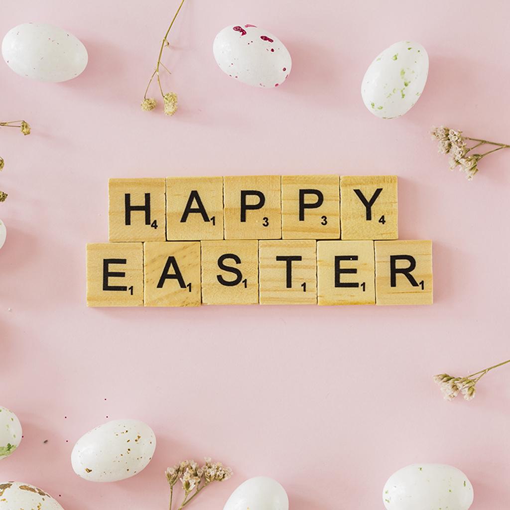 Фото Пасха яйцо Розовый фон Английский Еда Слово - Надпись яиц Яйца яйцами английская инглийские Пища Продукты питания слова текст