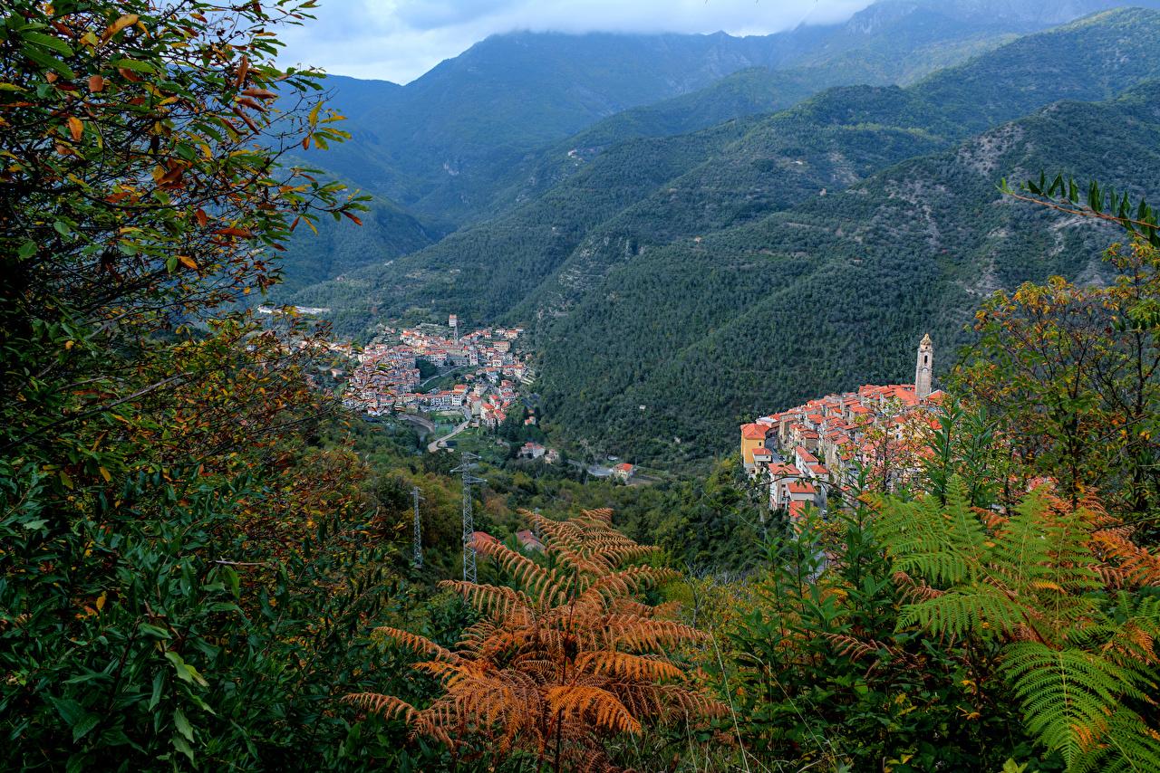 Фотография Лигурия Италия Pigna Горы Природа Леса Здания гора лес Дома