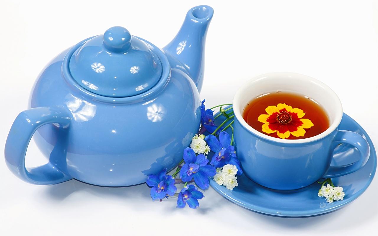 Фотографии Голубой Чайник Чашка Блюдце Продукты питания Белый фон Еда Пища
