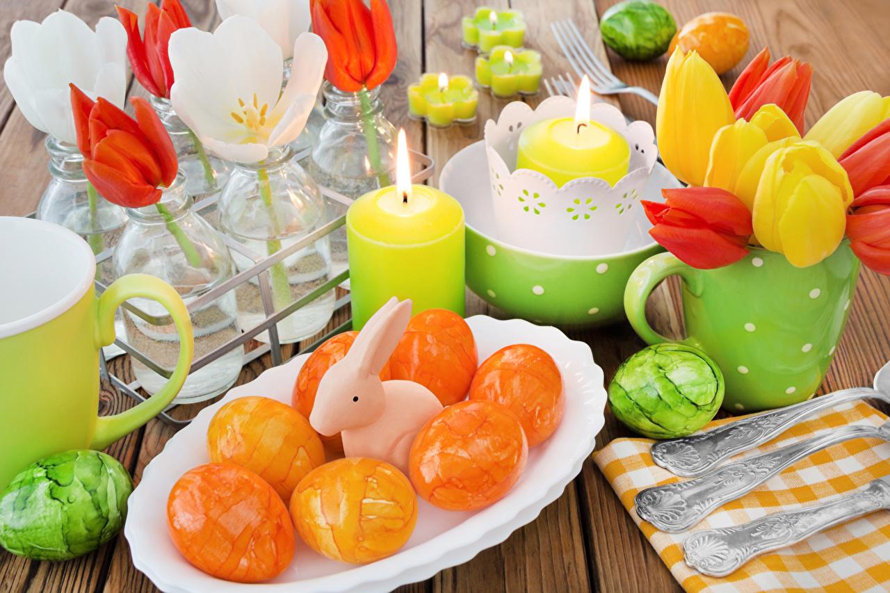 Фото Пасха Кролики яиц Тюльпаны Свечи Тарелка Праздники Доски кролик яйцо Яйца яйцами тюльпан тарелке