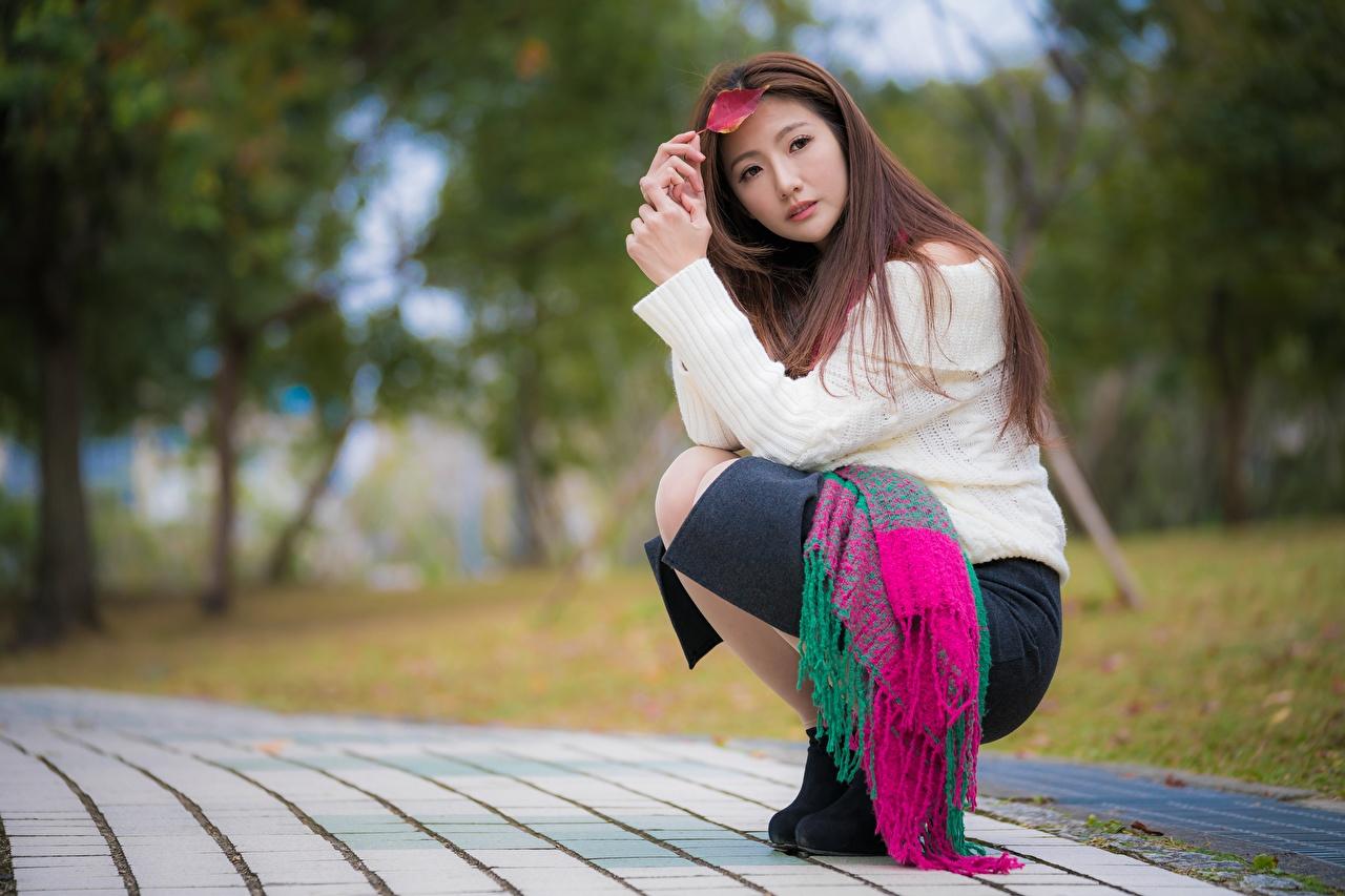 Фотография Шатенка Размытый фон Поза молодые женщины азиатки Сидит шатенки боке позирует девушка Девушки молодая женщина Азиаты азиатка сидя сидящие