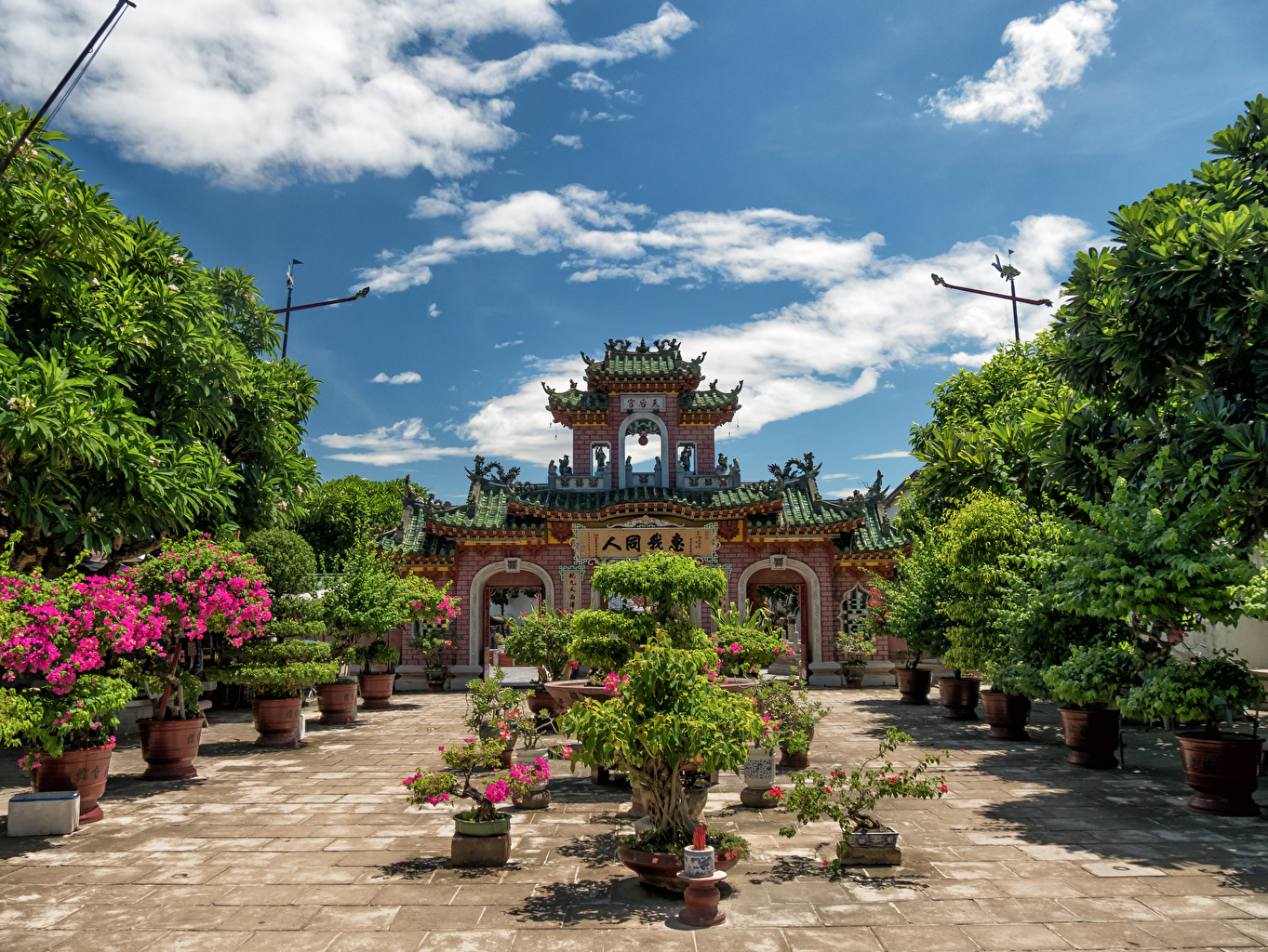 Фотография Вьетнам Fujian Assembly Hall Hoi An Храмы Кусты Города