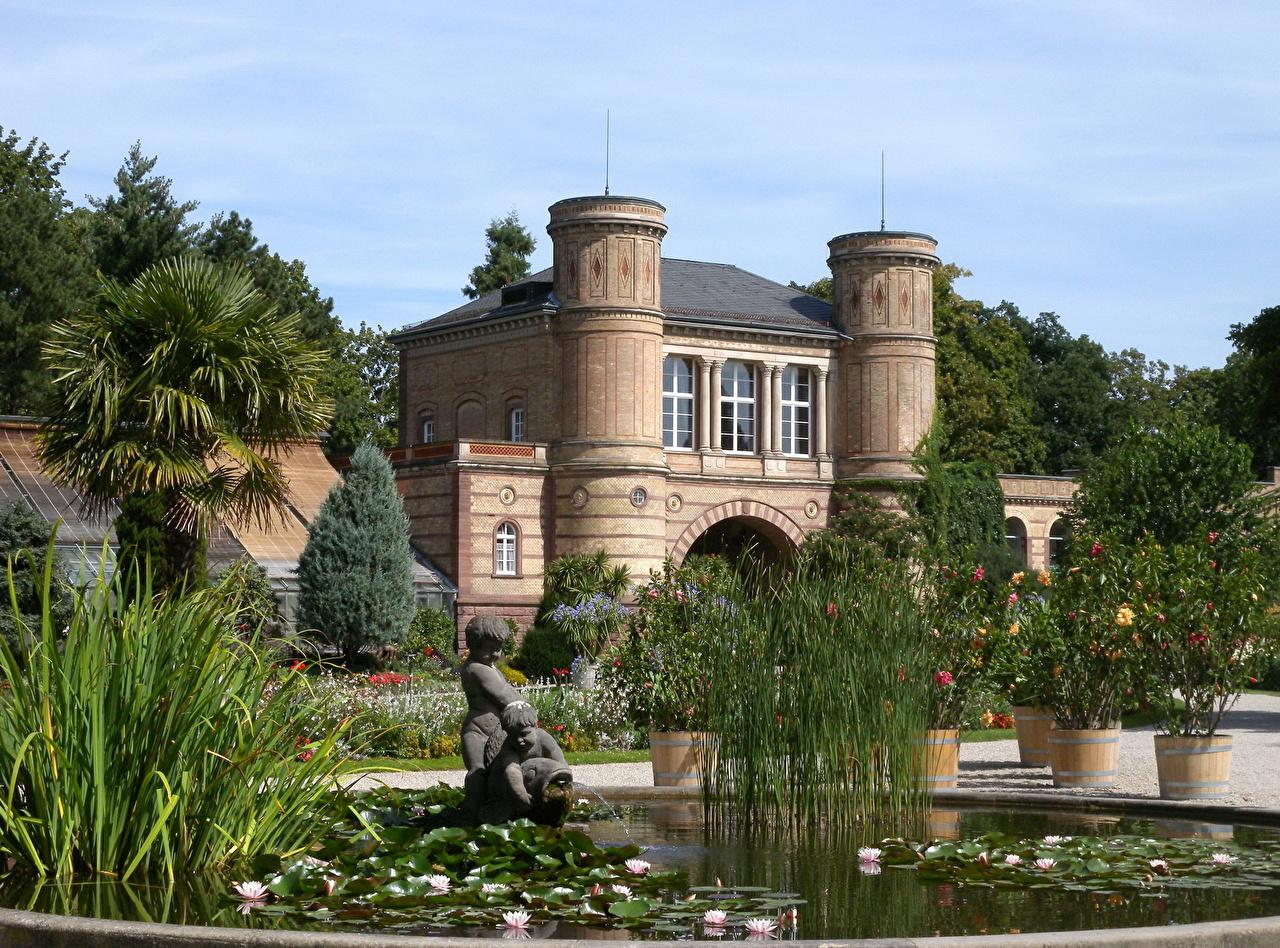 Фотографии Германия Botanical Karlsruhe Природа Сады Пруд