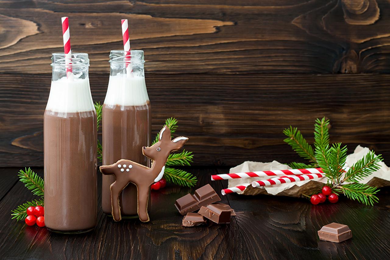 Фотография Олени Рождество Шоколад 2 Горячий шоколад Еда Бутылка на ветке Доски Напитки Новый год два две Двое вдвоем Какао напиток Пища Ветки ветка ветвь бутылки Продукты питания