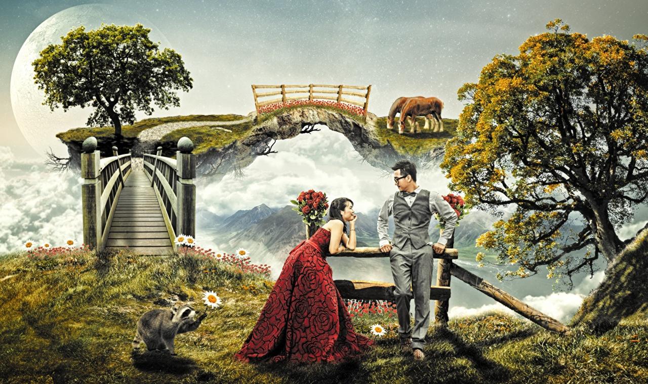 Фотография Еноты Мужчины Мосты вдвоем Фэнтези Очки Деревья Платье 2 Двое Фантастика