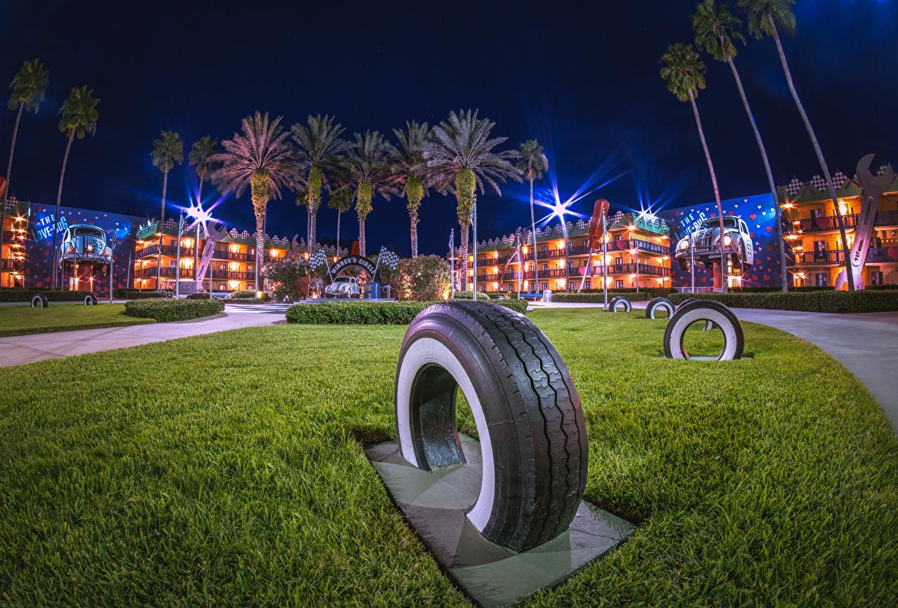 Обои для рабочего стола Анахайм Калифорния Диснейленд штаты покрышка HDRI Парки Пальмы в ночи город Здания дизайна калифорнии США америка Автомобильная шина HDR парк пальм пальма Ночь ночью Ночные Дома Города Дизайн