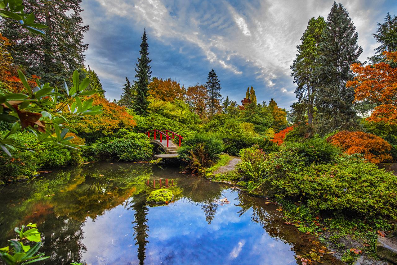 Обои для рабочего стола Сиэтл США Kubota Garden мост Природа Сады Пруд Кусты дерева штаты америка Мосты кустов дерево Деревья деревьев