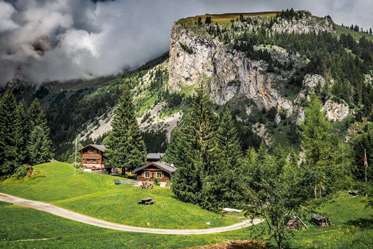 Фото Франция Allamont ели Горы Природа Луга Пейзаж Дома Ель гора Здания