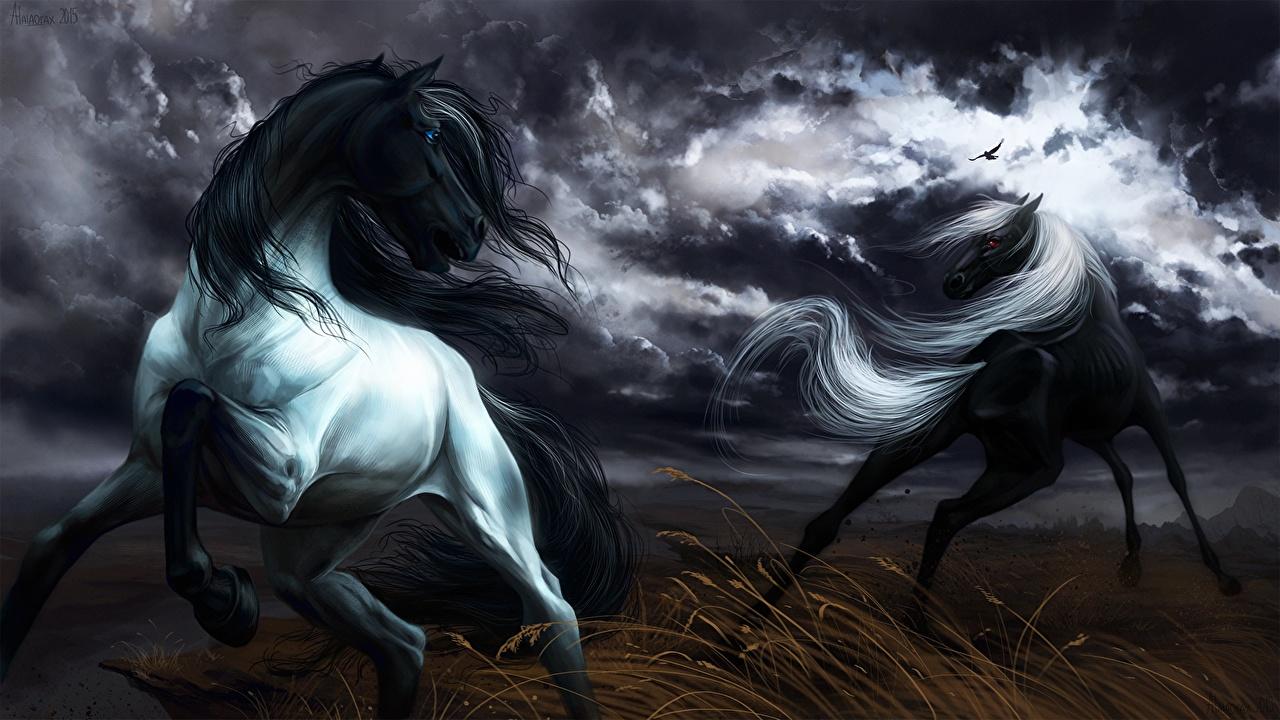 Фотографии Лошади бежит 2 животное Рисованные лошадь Бег бегущая бегущий два две Двое вдвоем Животные