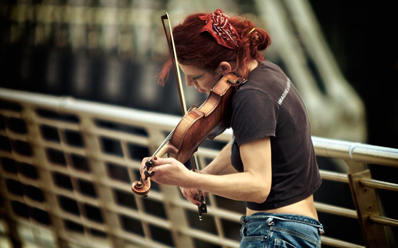 Фото Скрипки рыжие девушка скрипка Рыжая рыжих Девушки молодая женщина молодые женщины