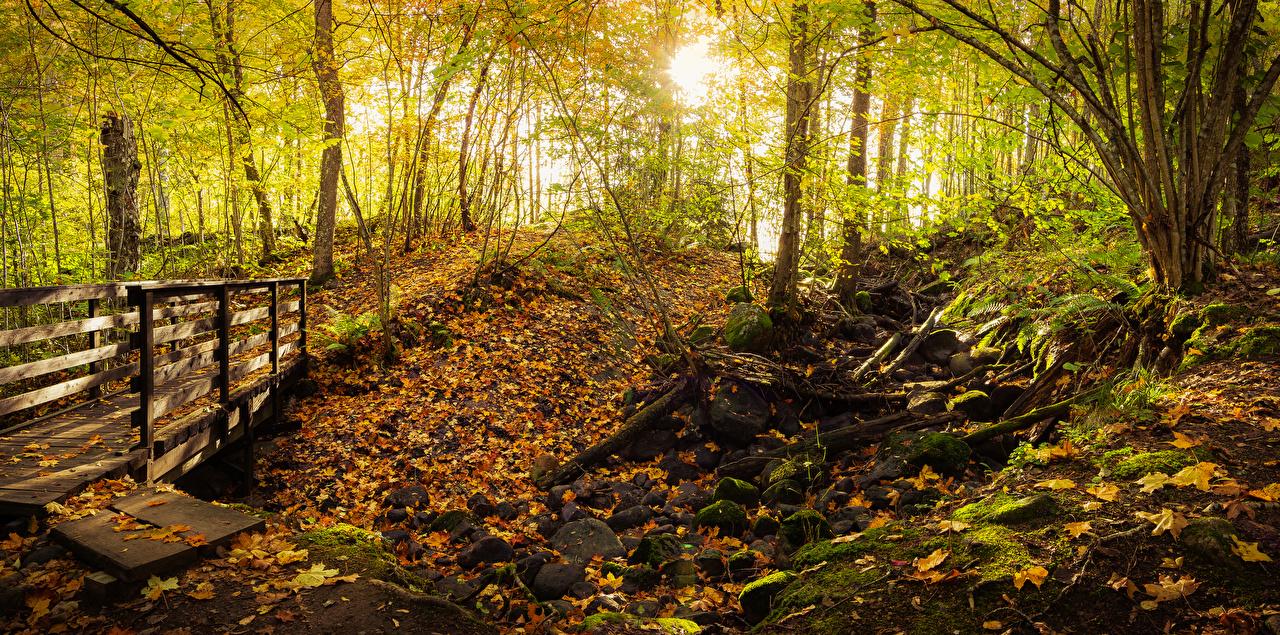 Обои Листва Финляндия Teijo National Park Осень Мосты Природа Парки Камни деревьев лист Листья осенние Камень дерево дерева Деревья