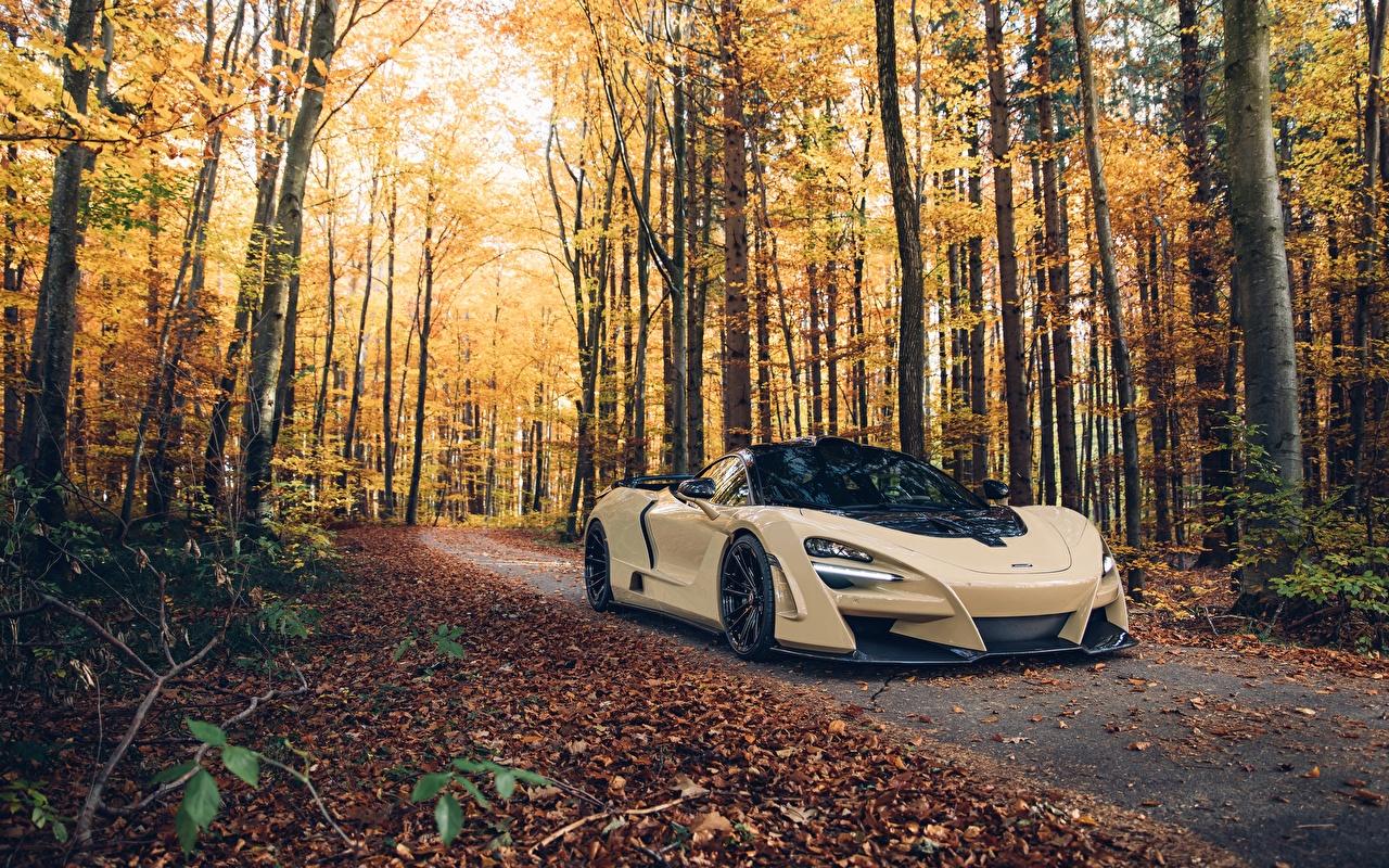 Фото McLaren 2018 Novitec N-Largo 720S Осень Леса авто Макларен осенние машина машины автомобиль Автомобили
