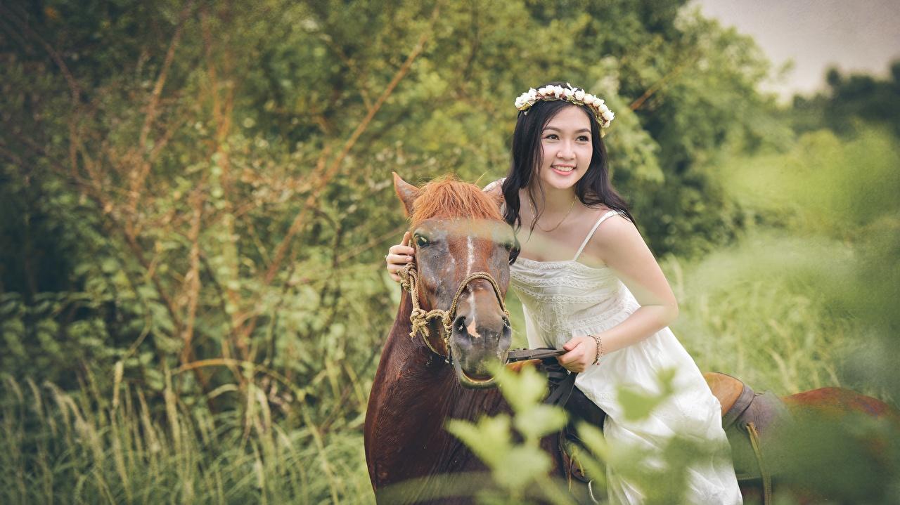 Фотография Лошади Брюнетка Улыбка Венок Девушки Азиаты Животные