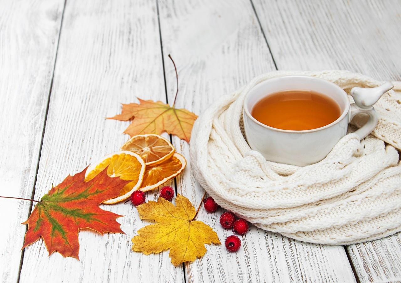 Фото лист шарфе клёновый Чай Еда чашке Листья Листва Шарф шарфом Клён клёна Пища Чашка Продукты питания