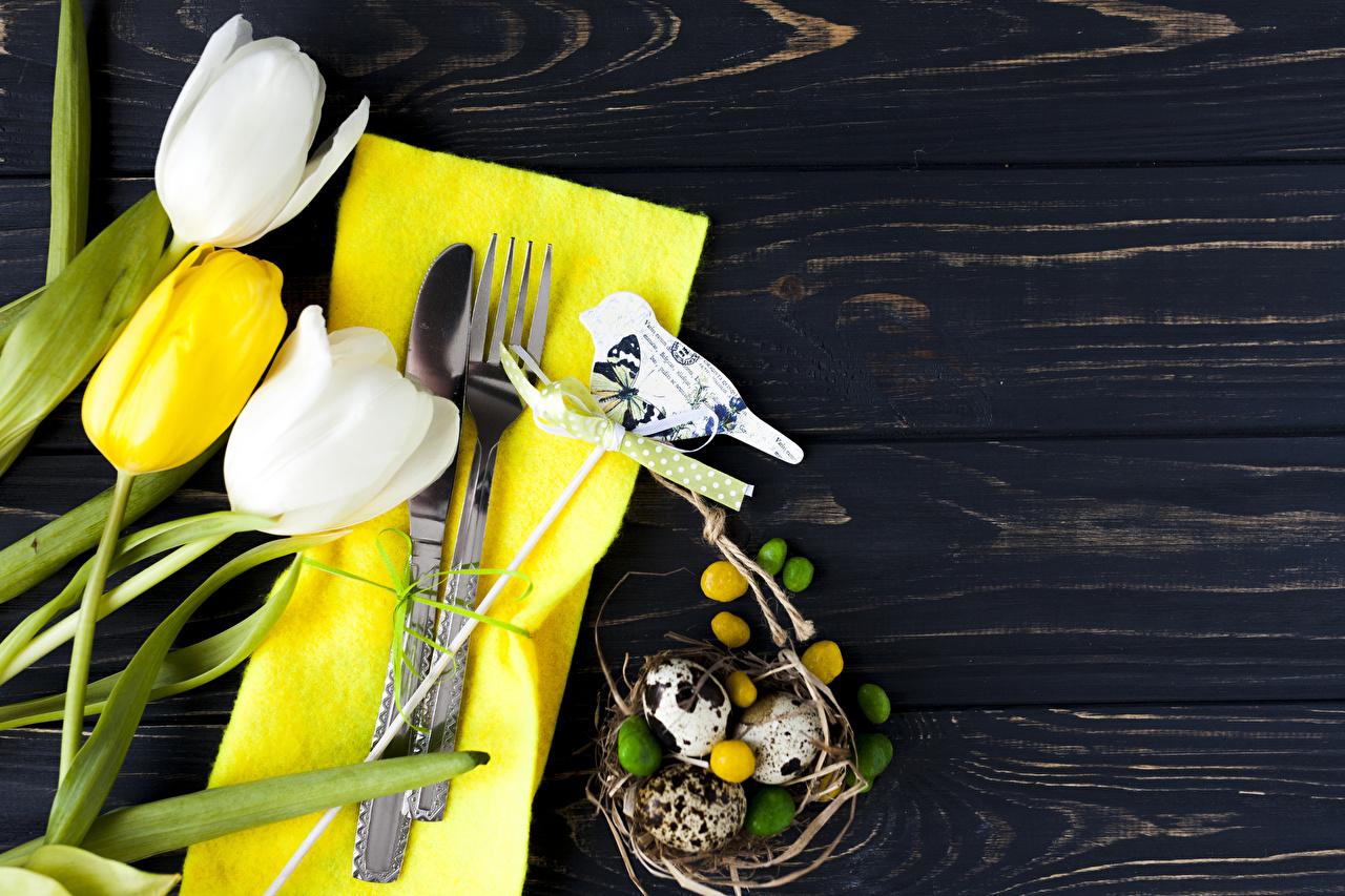 Фотография Пасха ножик яиц Тюльпаны Цветы Вилка столовая Продукты питания Доски Нож яйцо Яйца яйцами тюльпан цветок Еда Пища вилки