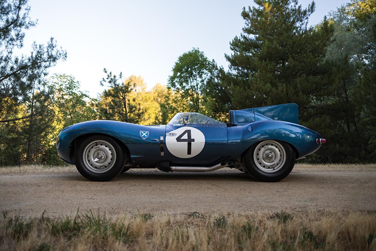 Фотографии Jaguar 1955-56 D-Type Short Nose with stabilisation fin синих Винтаж Сбоку Металлик Автомобили Ягуар Синий синие синяя Ретро старинные Авто Машины
