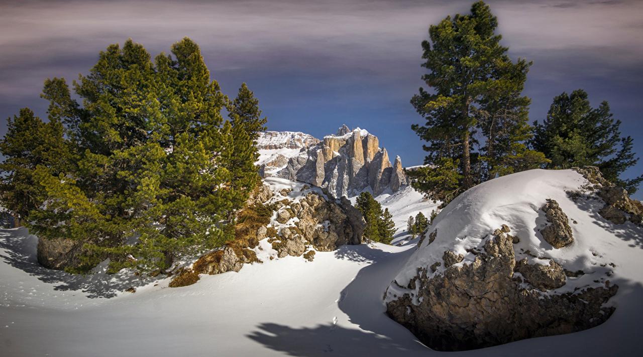 Фотография Италия South Tyrol Ель Утес зимние Природа снеге Камни ели Зима Скала скале скалы Снег снега снегу Камень