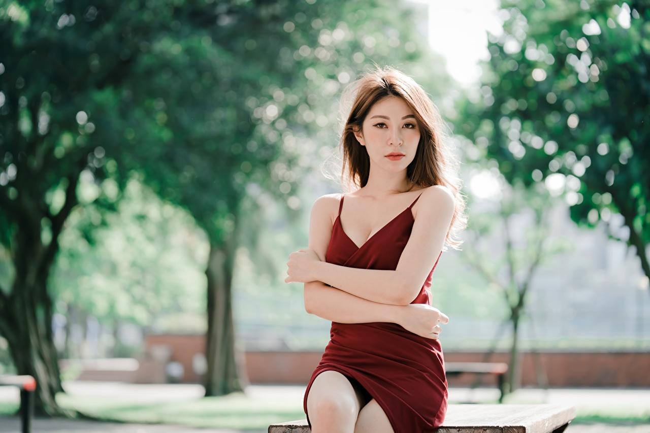 Фотография Шатенка боке молодые женщины Азиаты рука сидящие Взгляд платья шатенки Размытый фон девушка Девушки молодая женщина азиатка азиатки Руки сидя Сидит смотрят смотрит Платье