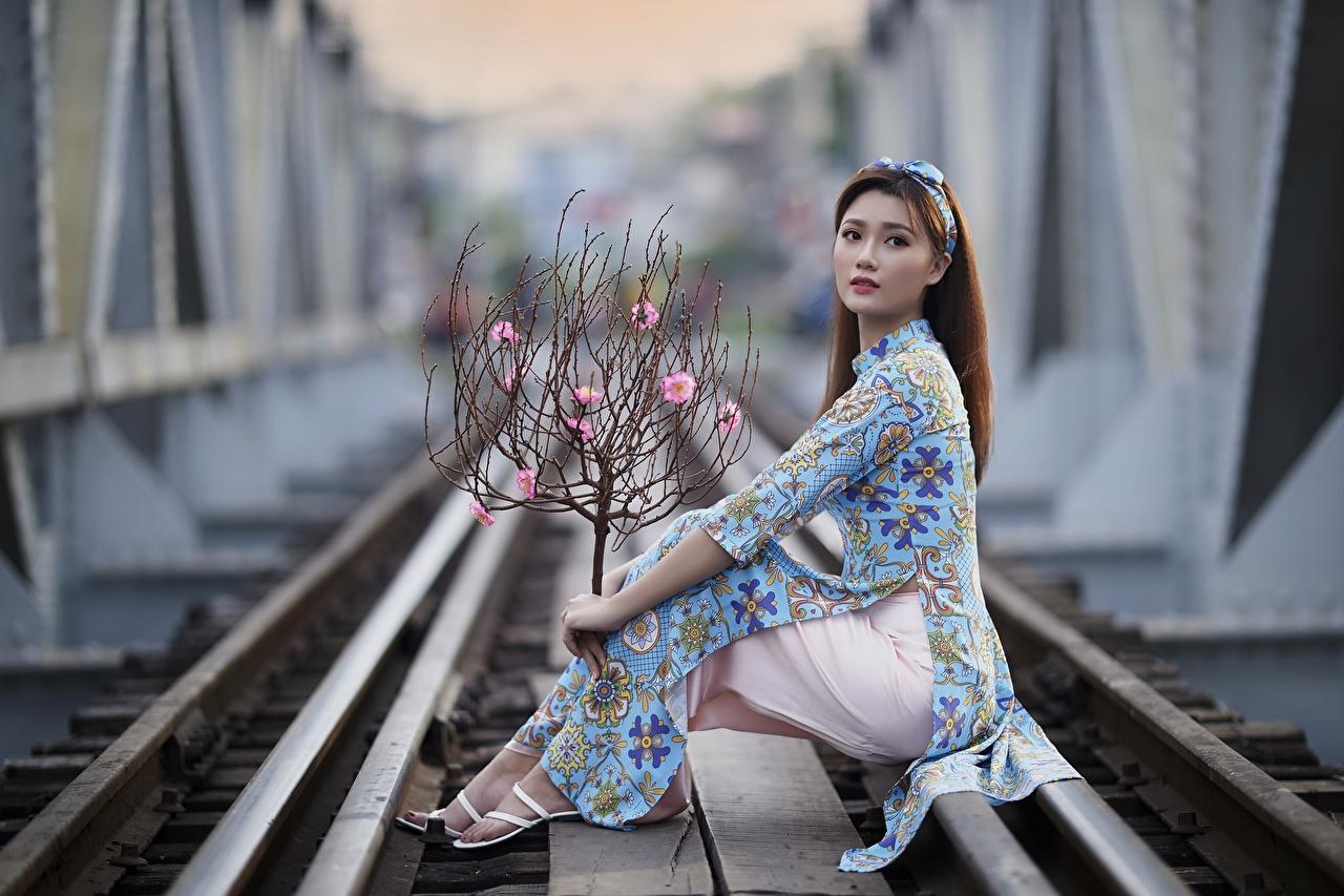 Фото рельсах боке Поза девушка азиатка Ветки Взгляд платья Рельсы Размытый фон позирует Девушки молодая женщина молодые женщины Азиаты азиатки ветвь ветка на ветке смотрит смотрят Платье