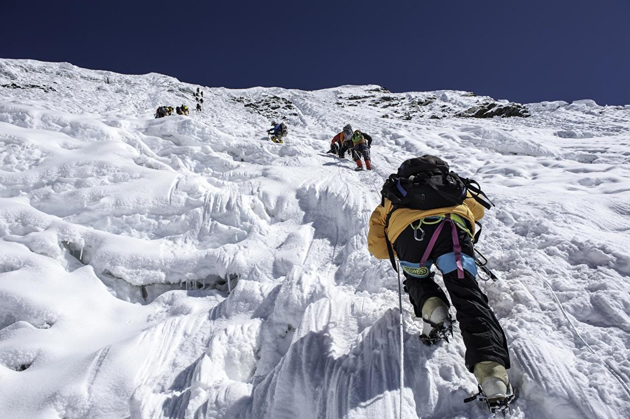 Фото альпинисты Рюкзак гора Спорт Альпинизм Сзади Альпинист Горы спортивные спортивная спортивный вид сзади