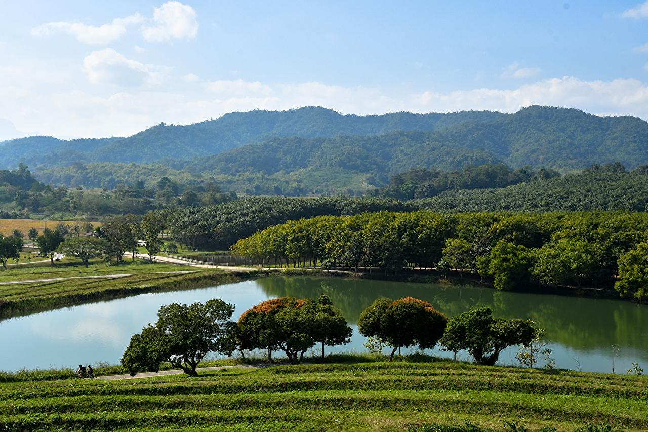 Фото Таиланд Chiang Rai Природа лес Реки дерево Леса река речка дерева Деревья деревьев