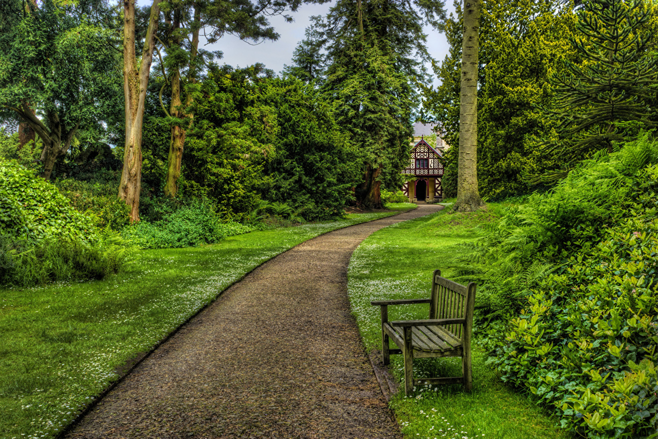 Фото Великобритания Biddulph Grange Garden Природа Парки Газон Скамейка Кусты дерево парк Скамья газоне кустов дерева Деревья деревьев